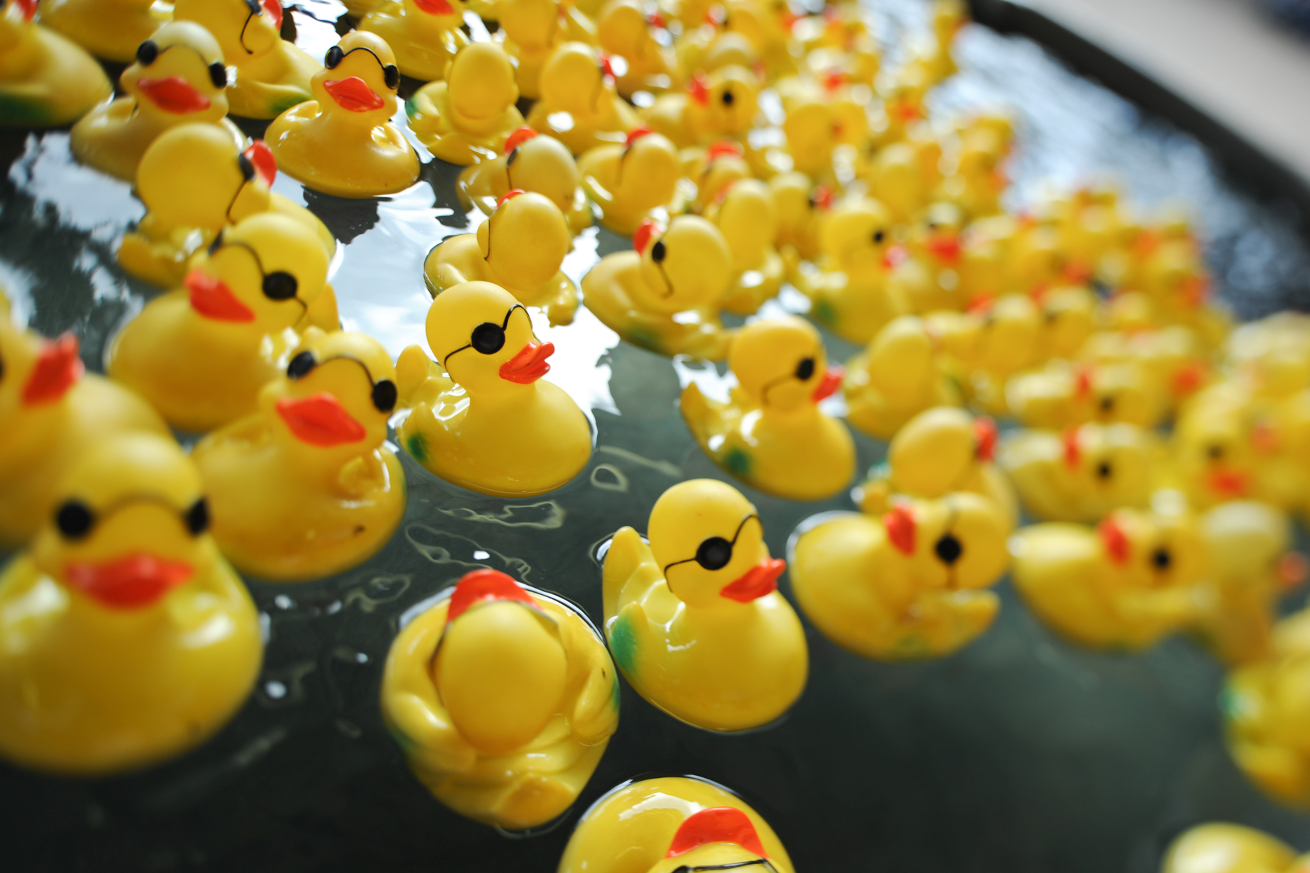 Rubber ducks on the midway at The State Fair of Texas. Photography by Kevin Brown